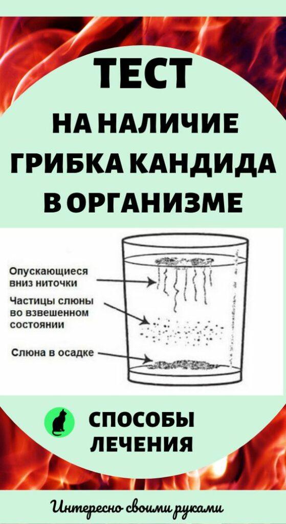 https://felsider.ru/wp-content/uploads/2020/04/855f3f36ac9cf53f03d5cba77b805bcb-559x1024.jpg