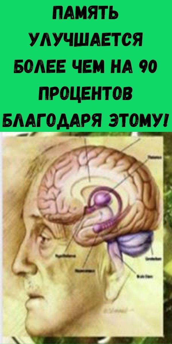 Память улучшается более чем на 90 процентов благодаря этому! Это также помогает восстанавливать кости и зрение