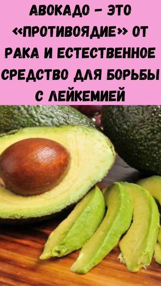 Авокадо - это «противоядие» от рака и естественное средство для борьбы с лейкемией